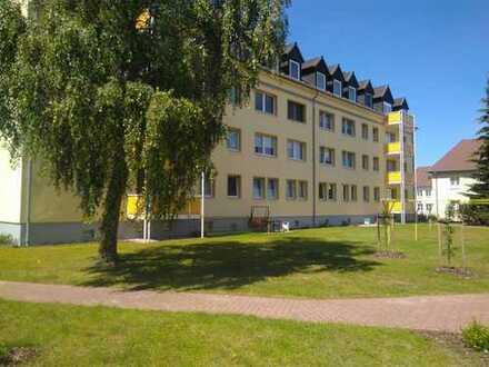 NEU....Hochwertig renovierte 4-Raum-Wohnung, mit Balkon im Erdgeschoss, in Eggesin zu vermieten