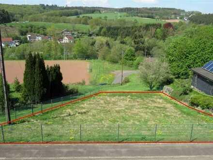 Baugrundstück mit Plänen für ein EFH in herrlicher Höhenlage von Steinebach im Westerwald