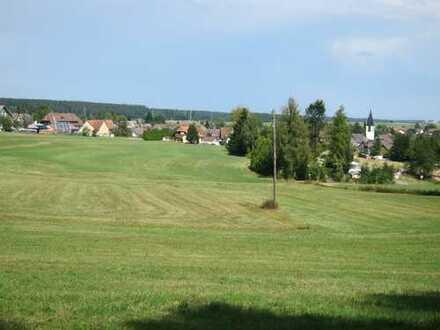 Nur 5km von Titisee-Neustadt: 33.600 m² Wiesenland in Rötenbach als Kapitalanlage zu verkaufen