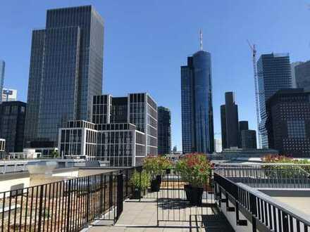 PENTHOUSE mitten im BANKENVIERTEL: fantastischer Skylineblick, Dachterrasse, Erstbezug!
