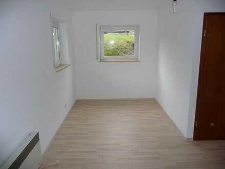 Ruhiges 1-Zimmer-Appartement für Pendler