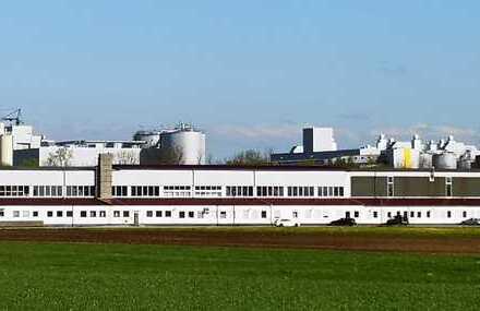 *Industriehalle mit Kranbahnen und Freifläche*( für Produktion, Hochregallager, Serviceflächen uvm.)