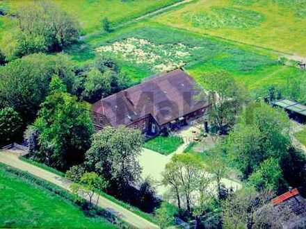 Modernisiertes Landhaus mit großem Grundstück und Reitplatz in idyllischer Wesernähe