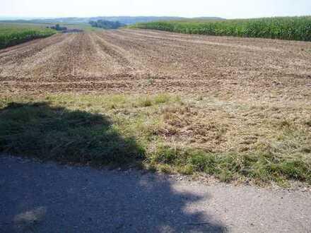 """Landwirtschaftsfläche Acker im Gewand """"Baderslehne"""" Gemarkung 86744 Hainsfarth zu verkaufen"""