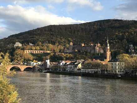 Grosszügige, möbilierte Zwei-Zimmer-Wohnung mit Blicklage in Heidelberg Neuenheim