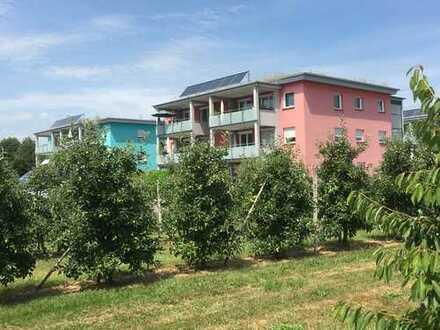 Seenahe 3 Zimmer Wohnung in schöner Lage mit See- und Bergblick in Kressbronn am Bodensee