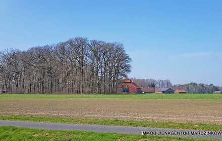 Landhaus in herrlicher Resthoflage in der Gemeinde Harpstedt
