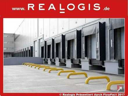 Flexibel nutzbare Lager- / Logistikfläche   mehrere Rampen & Tore   ca. 10,50 m UKB