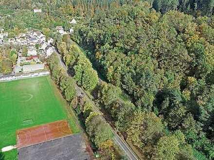 Nachverkauf 3,8 ha Forstliegenschaft bei Calw im Nordschwarzwald