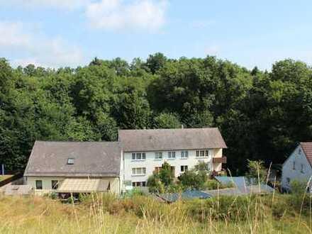 Besonderes Hanggrundstück im alten Dorfkern von Eckersdorf
