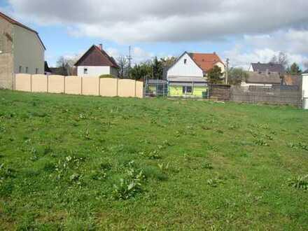 Günstiges, großes Grundstück in Marienthal