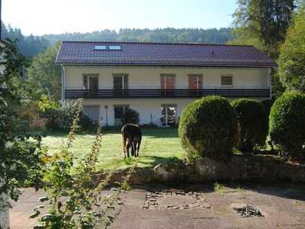 Schöne zwei Zimmer Wohnung in Calw (Kreis), Calw