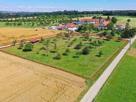 Landwirtschaftliche Fläche bei Baindt zu verkaufen!