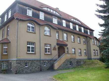 Gemütliche, praktische 1,5-Raum-Wohnung in ruhiger Lage an der östlichen Peripherie von Großschönau