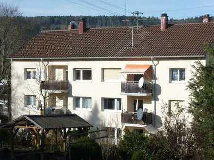 sofort einziehen!!! +++ modernisierte 4 1/2-Zimmer-Wohnung am Lemberg +++