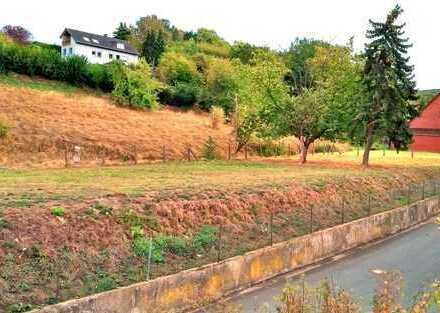Bauland mit zusätzlicher Wiese und Bachlauf