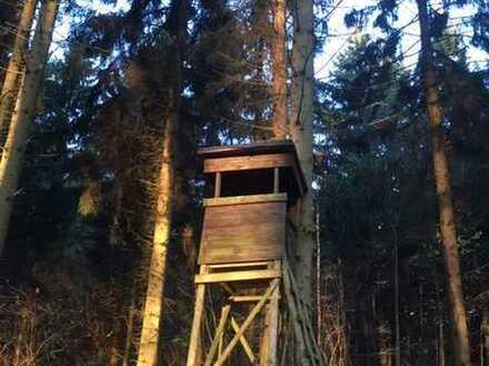 100 ha Eigentum mit Jagdmöglichkeit in der Uckermark!