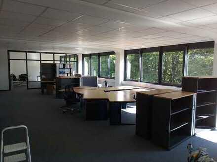 Büroräume mit ca. 200m² zu vermieten
