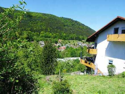 **Im Großraume Karlsruhe/Pforzheim** Bauplatz mit einzigartigem Ausblick zum Naturpark Schwarzwald