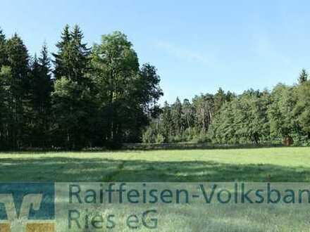Wald- und Wiesengrundstück in Bissingen
