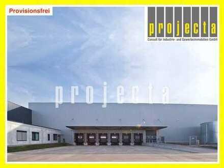 14.800 m² Lager+8 Rampen+gr0ße ebene Tore+helle Halle+0173-2749176+PROVISIONFREI