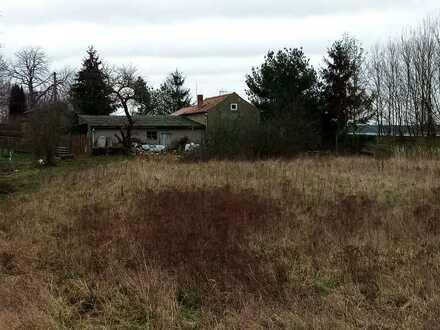 Ruhiges Wohngrundstück in Herzberg/ Mark (bauträgerfrei und ohne maklercourtage)