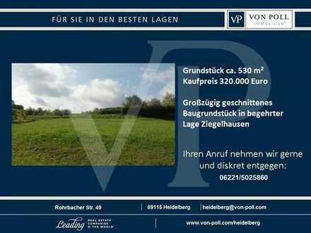 VON POLL IMMOBILIEN Grundstück in Ziegelhausen