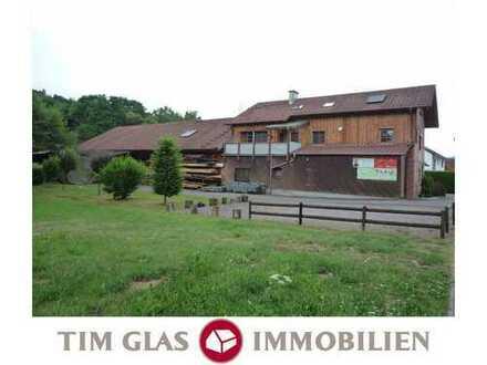++ Gewerbehalle mit Wohnhaus, Hof, Garten + Holzlagergrundstück! ++