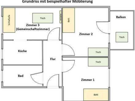 3 Zimmer Wohnung + Neu Saniert + EBK, Balkon, Garten... + WG geeignet