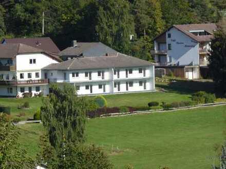 Erstbezug nach Sanierung mit Balkon: attraktive 2,5-Zimmer-Wohnung mit Wohnküche in Grasellenbach
