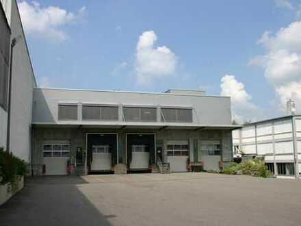 schöne und helle Lager- und Produktionsräume in Brackenheim