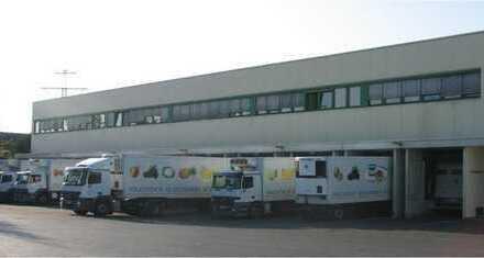 2x1000m klimatisierte Büroflächen beliebig teilbar+ggfs.bis zu 9800m (Kühl)Lagergflächen n.V.
