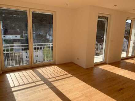 Erstbezug nach Sanierung: schöne 5-Zimmer-Wohnung mit Balkon in Schriesheim/Altenbach