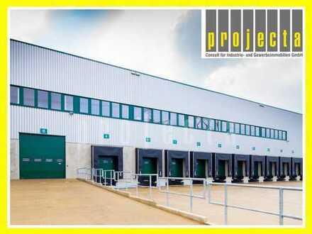 10.000 m² Logistik+10m UKB+Sprinkler+0173-2749176+PROVISIONSFREI