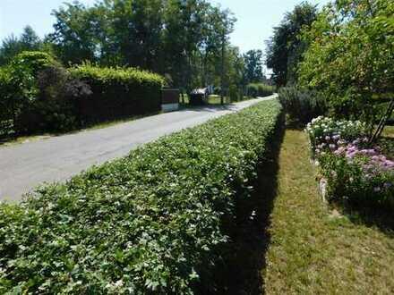 Herrliches Baugrundstück im Grünen in Cottbus-Kiekebusch