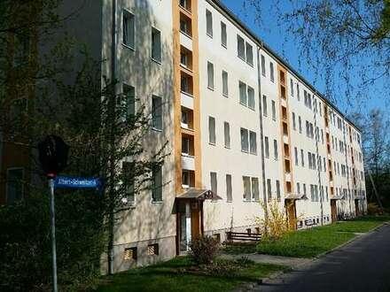 *** Großes Wohnzimmer, Balkon, Laminatboden ***