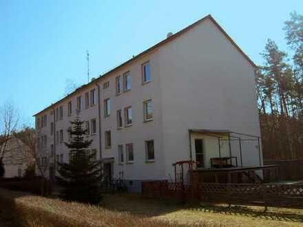 Renovierte 4-Zimmer-Wohnung in grüner Umgebung