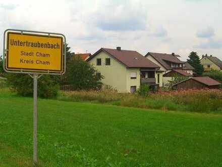 Schöne 2-Zimmer-Wohnung in Cham-Untertraubenbach