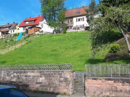 72221 Haiterbach Bauland / Grünland 638 m²