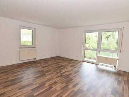 Ideales Single-Apartment mit Pantry-Küche und Balkon!