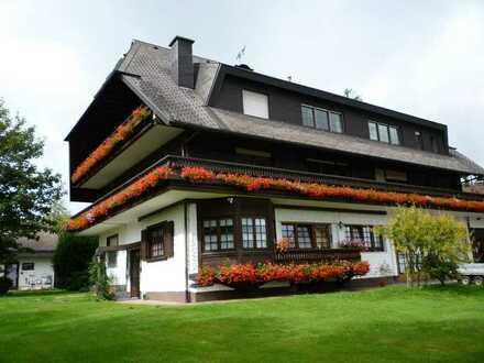 helles 1-Zimmer Appartement (und 2-Zimmer Wohnung Kosten ab - Euro 240 kalt und 120 NK)