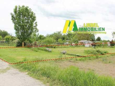 Jockgrim: Garten 650 m² im Kleingartengebiet