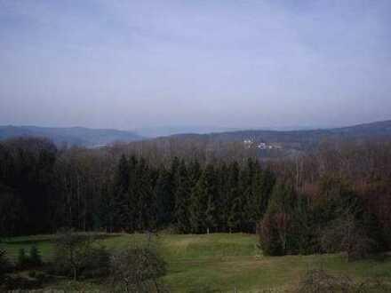 Lorch-Rattenharz Helle 3,5 Zimmer DG - Provisionsfrei (Privat)