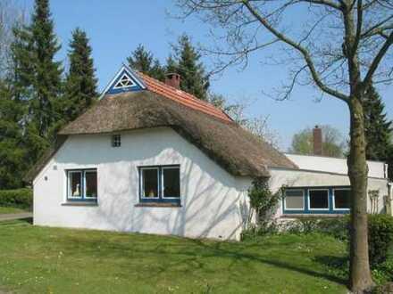 Traumhaftes Reetdachhaus als Ferienhaus eingeführt in Nordseenähe