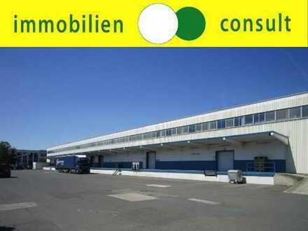 """2.400 m² Lagerfläche mit Rampe in Dietzenbach""""PROVISIONSFREI"""" zu vermieten"""