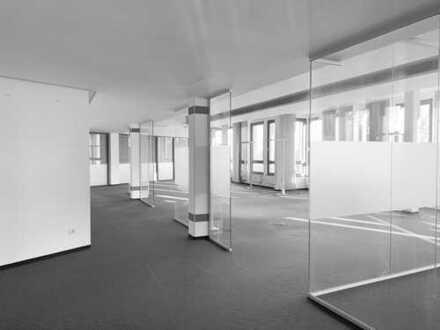 :::IGENUS - Transparente Open Space Fläche mit viel Glas
