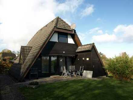 Sehr gepflegtes Ferienhaus nahe des Nordseedeiches!