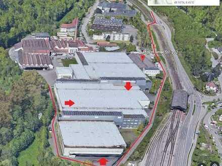 Produktions-/Lagerhalle mit ca. 7.500m²
