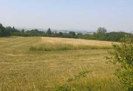 Grünfläche, Gartenland, Sondererholungsgebiet, unbebaut mit Weitblick in Melchendorf