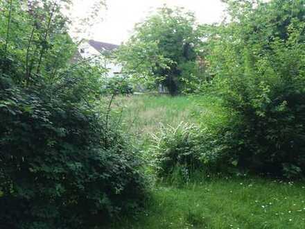 Grundstück für MFH in Dielheim mit Altbestand
